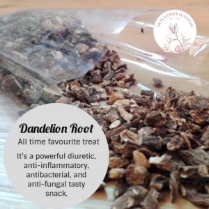 Willowlicious Dandelion Root Snack