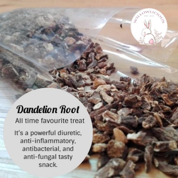 Willowlicious Dandelion Root Snack