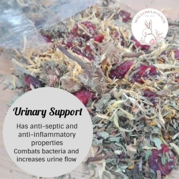 Willowlicious Urinary Support